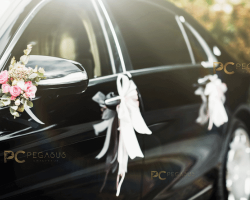 Car-decor-as-per-your-choice.png